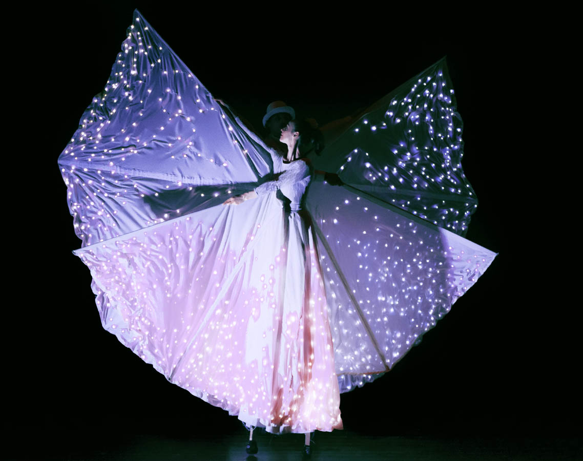 performance-di-farfalle-luminose.jpg
