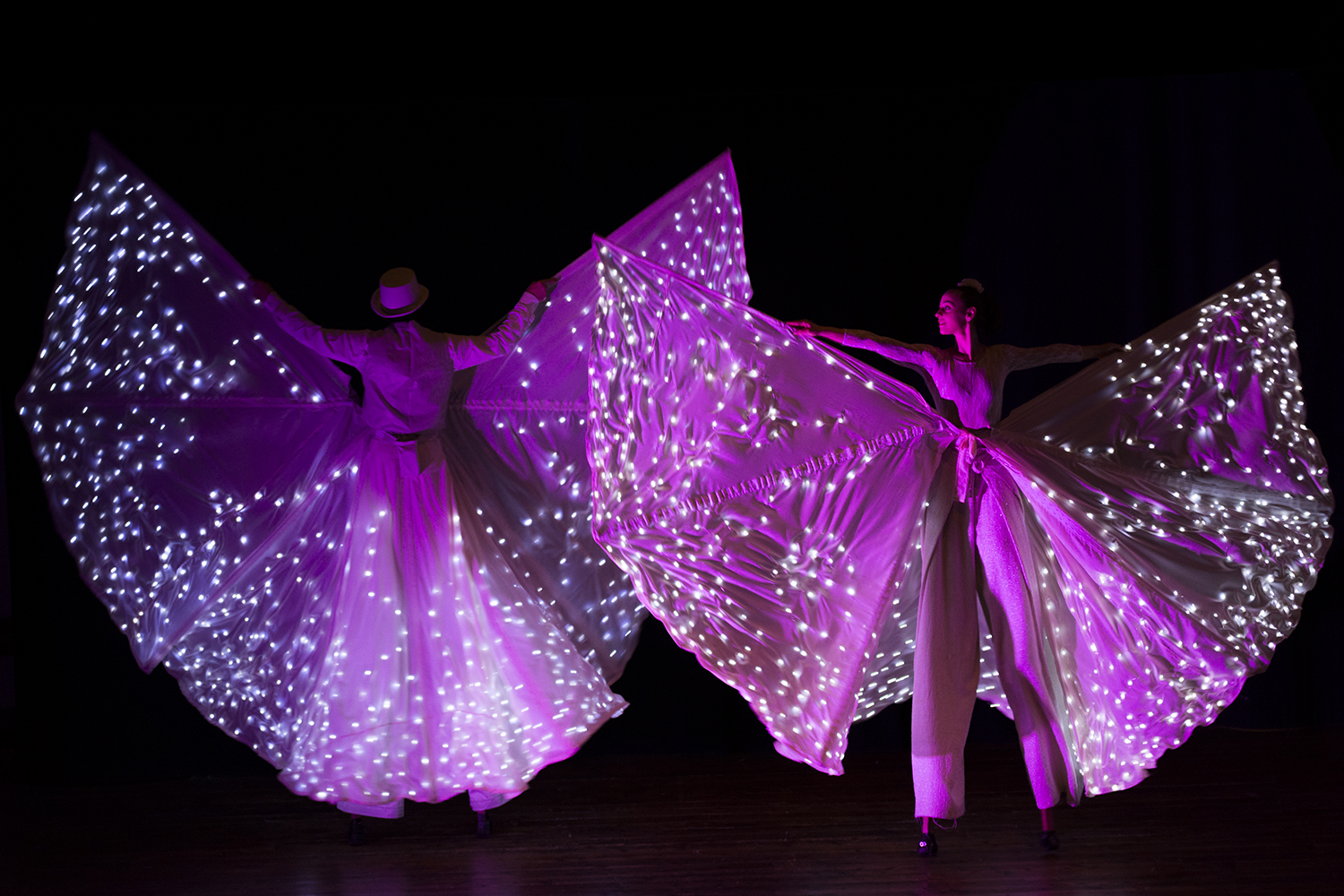 13-light-butterfly-show.jpg